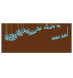 Logo Santuario de la Luz