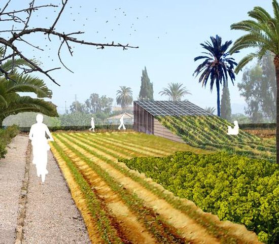 Plan Director de los Parques Integrados de Alcantarilla (Murcia)