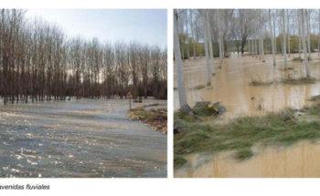 Propuesta Tramo Río Segura en Murcia