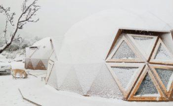 2017-01-19 nevada Jumilla (1)